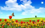 обои цветы - тюльпаны